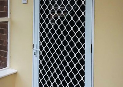 Security flyscreen doors2